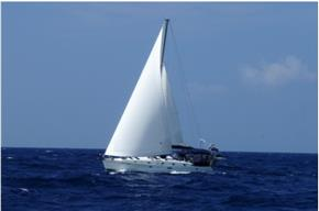 Paradise Sailing Charters